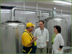 Оборудование для производства пива: минипивзаводы
